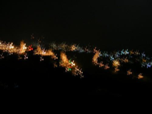 Lampu di malam hari yang secara tidak sengaja diambil dengan kamera yang goyang, menampilkan tampilan Fraktal yang bagus. Lokasi: Taman Langit, Bandung