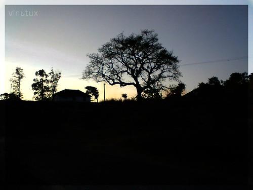 Alone in the Dark | V2
