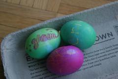 Gloria's Eggs