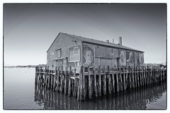 They Also Faced the Sea, Provincetown