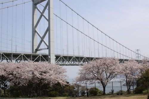 japan april 167