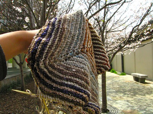 Noro shawlette and cherry blossoms