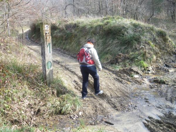 Foto 4 - Inicio de la senda por el arroyo Mariaka