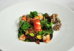 Supplement: Fresh Morel Mushroom and Fava Bean Salad