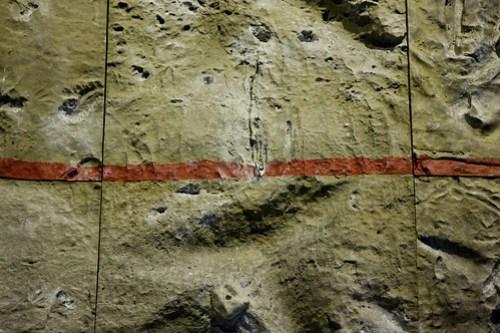 26/05/2009 : La ligne rouge