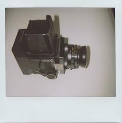 RB-roid seen by Polaroid 1200si