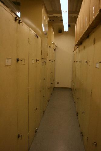 Bird skin storage cases at Royal Ontario Museum