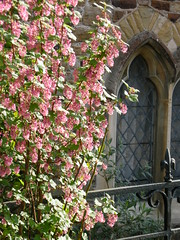 Church window in Rye