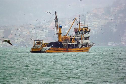 fisher, beykoz village, üsküdar, istanbul, pentax k10d