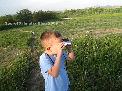 Birdwatcher... :)