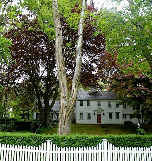 White antique house with white picket fence and hedge in Sandwich MA