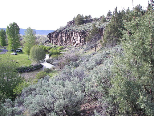 Page Springs, Steens Mountain