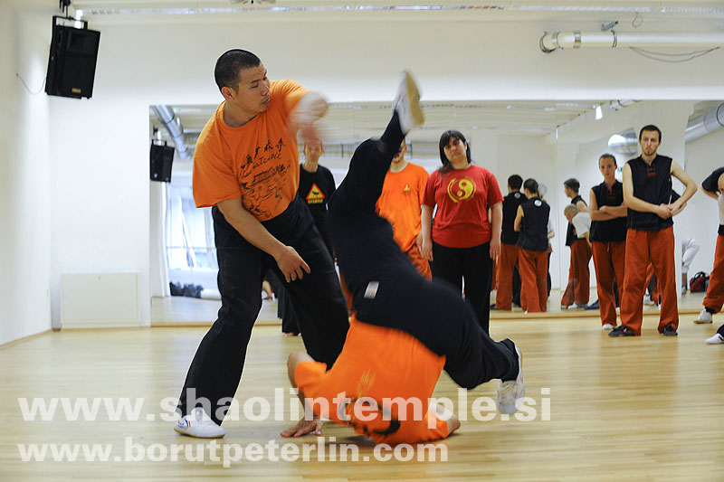 Shifu Shi Yanzi 20090419_8019