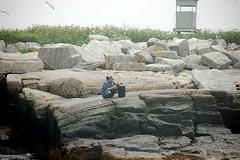 Egg Rock Island Researcher