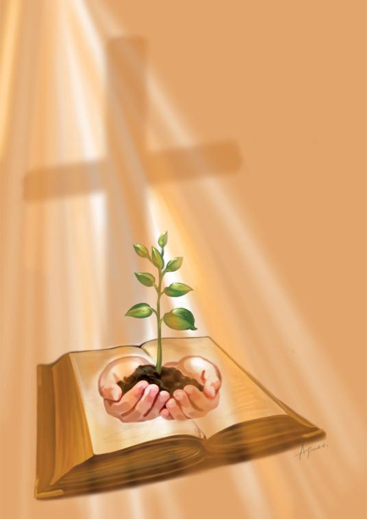 plant_bible-copy
