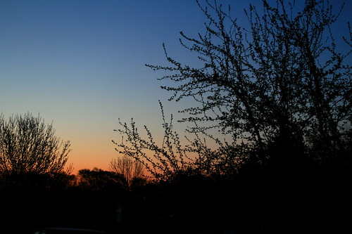 IMG_9844 by you.
