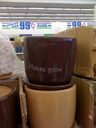 my kind of flower pot