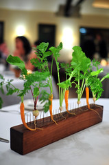 Blue Hill at Stone Barns Carrots and Radishes