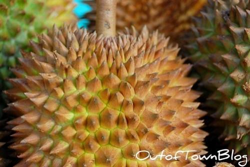 Davao Sweet Durian