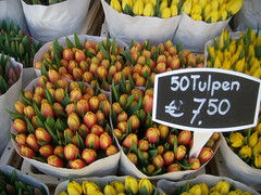 Tulips at Amsterdam flower market