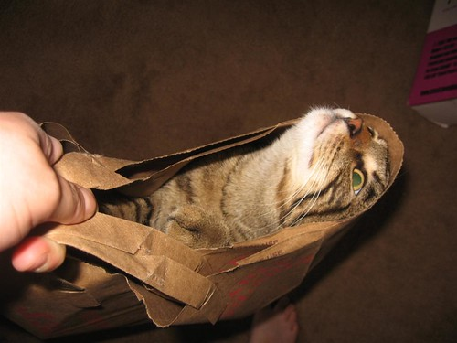 max in a bag