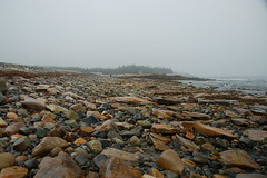 Seawall Beach Rocks