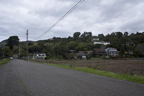 Swampy Road