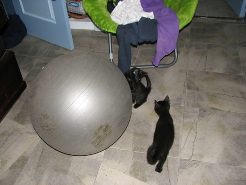 Lilys Exercise Ball by Christina Welsh (Rin).