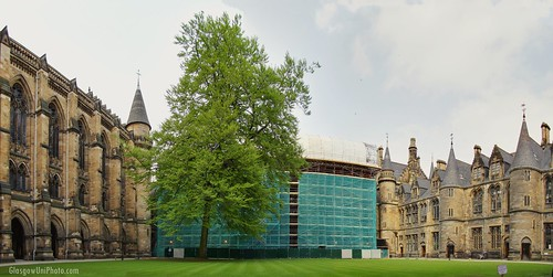 The Renovations from the East Quadrangle