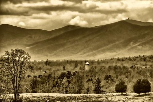 A Mountain Scene