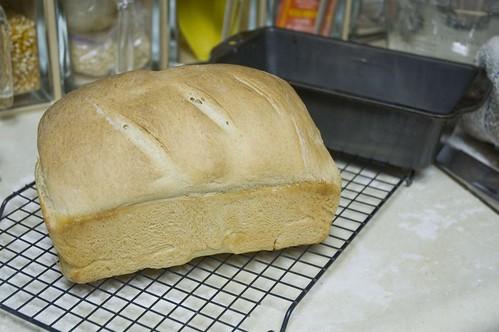 whitebread08