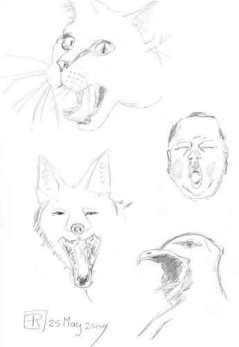 The Big Yawn, part 1