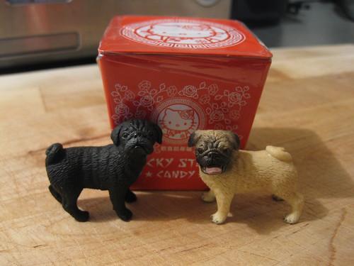 Lucky & Puggy