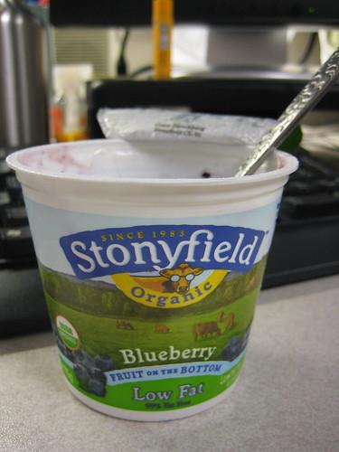 Stonyfield blueberry yogurt