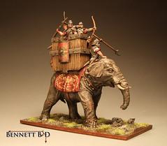 Roman Elephant 2