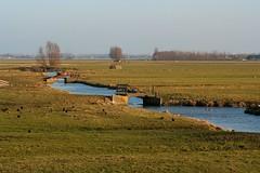 Ronde Venen - Woerdse verlaat - Foto door Frans de Wit
