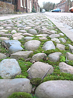 i do love the cobblestones.