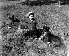 Young boy with Sicilian donkey and dog