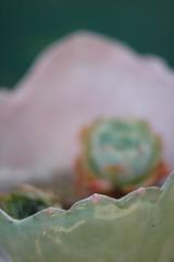 ceramics-72