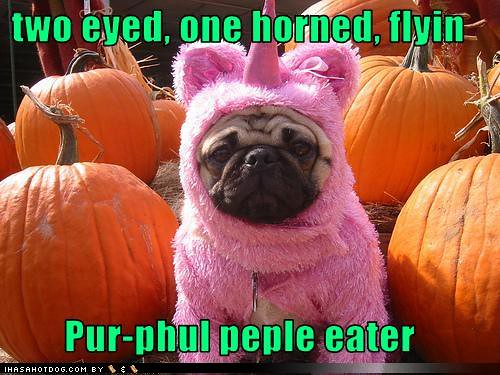 purple people eater pug