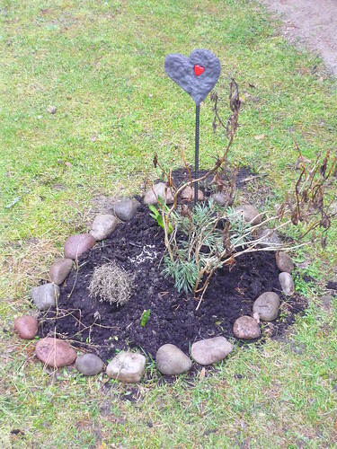 A heart in the flowerbed