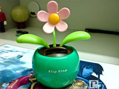 Flipflap2