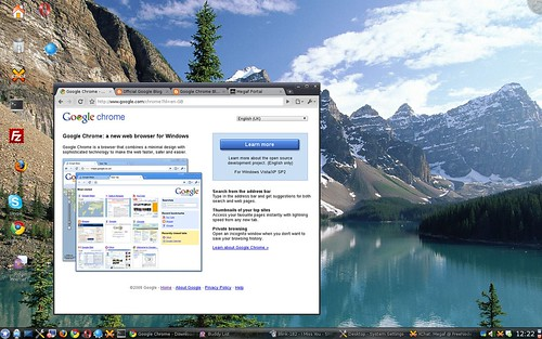 Google Chrome @ Linux - Just perfect.