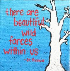 Wild Forces I (4x4)