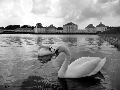 Nymphenburg (Wien)