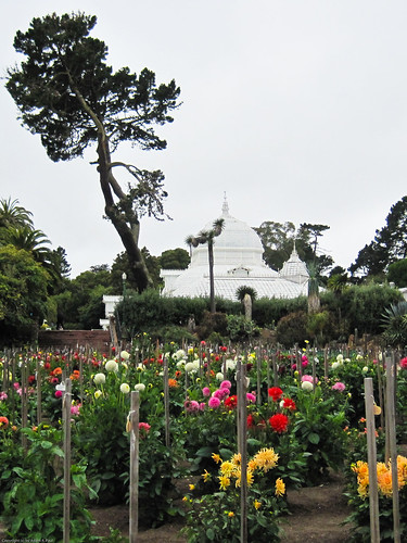 Conservatory of Flowers by you.