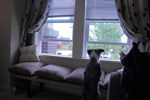 2011 may 22 008