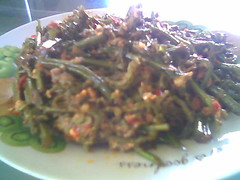 Bandong's sambal paku