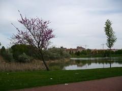 Laguna de Duero