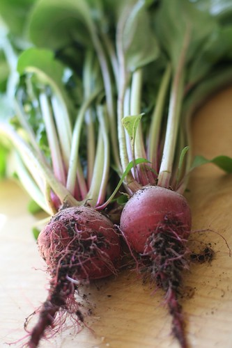 For Pres. Obama, at least beets are pretty, aren't they?
